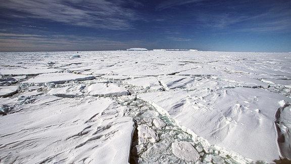 Treibeis im polarmeer