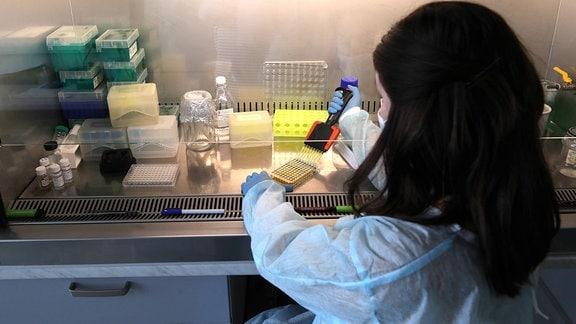 Laborantin führt einen ELISA-Test durch