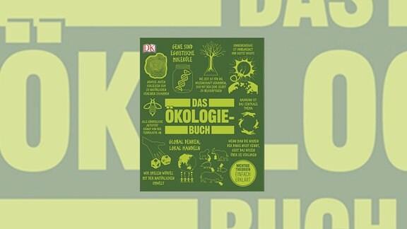"""Grünes Buch mit Zeichnungen von Elementen der Natur, jeweils mit einem kleinen Teaser-Text. In der Mitte der Titel """"Das Ökologie-Buch"""""""