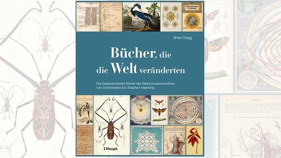 Cover des Buchs. Zeigt 14 farbige Abbildungen aus dem Buch, von Handschriften bis hin zu Illustrationen.