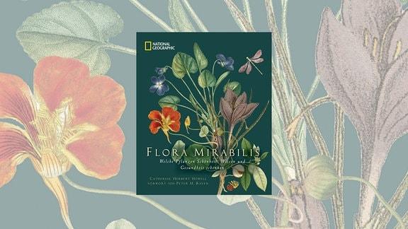 Das Cover von Flora Mirabilis zeigt einen bunten Strauß von wilden Blumen, Blättern und Blüten, umkreist von einer Libelle