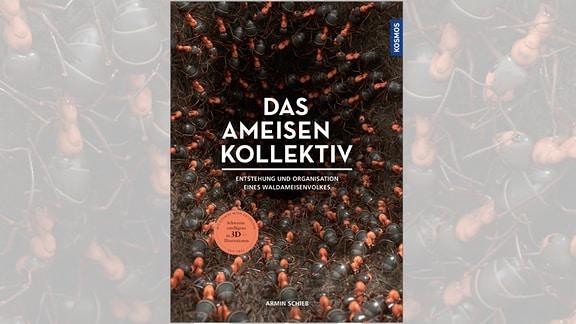 Armin Schieb: Das Ameisen-Kollektiv. Entstehung und Organisation eines Waldameisenvolkes