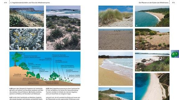 Aufgeschlagene Buchseiten mit dem Thema Strände am Mittelmeer