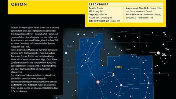 Das Bild zeigt den Beginn vom Steckbrief des Orion. Ein gelber Kasten am oberen Bildrand enthält die wichtigsten Daten zum Sternbild. Darunter finden sich eine Beschreibung des Sternbilds, eine Abbildung desselben mit Verbindungslinien, die den Namen des Bildes herleiten, sowie eine Zeichnung von 1627, in der der Heilige Joseph die Sterne verbindet.