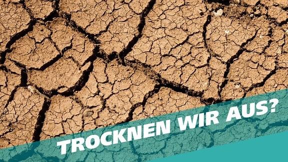 Titelgrafik zur Themenwoche: Trocknen wir aus? Zu sehen ist vertrockneter Boden, bei dem die Erde aufreißt.