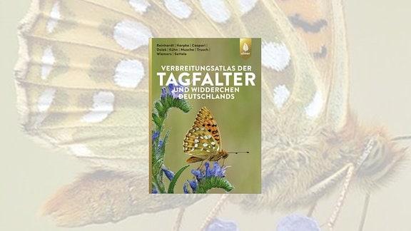 Das Cover zeigt einen braun-gelben Schmetterling auf einer Staude mit blauen Blüten