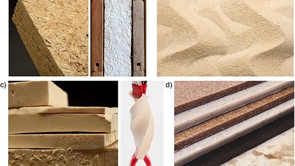 Anwendungsgebiete für Pilzmaterial