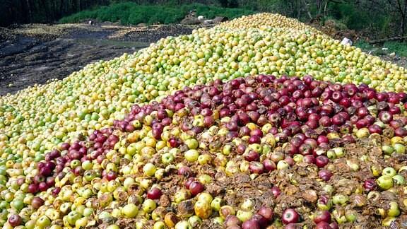 Matschige Apfelberge aus der «Überproduktion» (2003)