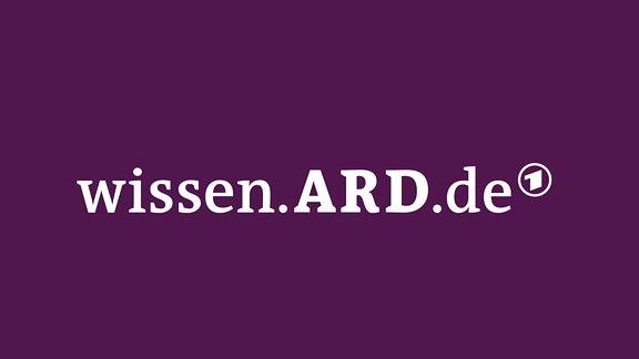 Logo Wissen.ARD.de
