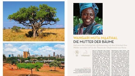 Drei Bilder sind auf der Doppelseite zu Wangari Muta Maathai zu sehen: ein Leberwurstbaum, ein Park in Nairobi und ein Porträt der Aktivistin.