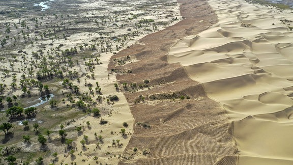 Taklamakan-Wüste