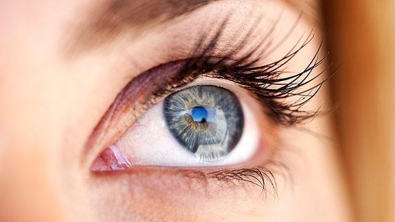 Junge Frau mit grauem Auge