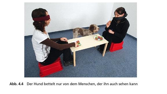Zwei Frauen sitzen sich an einem Tisch gegenüber, einer davon sind die Augen verbunden. Ein Hund bettelt bei der Frau, die ihn auch sehen kann.