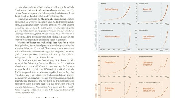Die Doppelseite aus dem Buch zeigt acht Graphen, die die Beschleunigung der Welt veranschaulichen. Weltbevölkerung, BiP, Telekommunikation, Tourismus, Kohlendioxid, Temperatur, Versauerung der Meere und Abnahme der Biodiversität steigen in Abhängigkeit voneinander exponentiell, insbesondere seit ca. 1950.