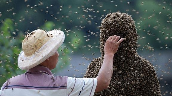 Ein Mann unter einer Bienenkolonie