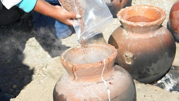 Die Archäologen brauten zusammen mit peruanischen Brauern das Rezept von Chicha nach.