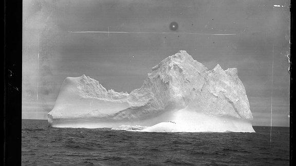 Eisberg mit Pinguinen von Valdivia aus fotografiert