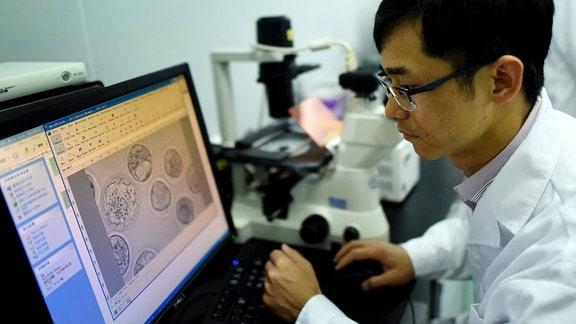 chinesicher Forscher