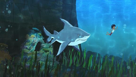 Marco entdeckt einen Hai