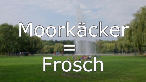 Hallisch - Moorkäcker = Frosch