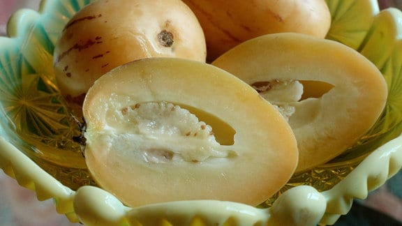 Pepino Birnenmelone