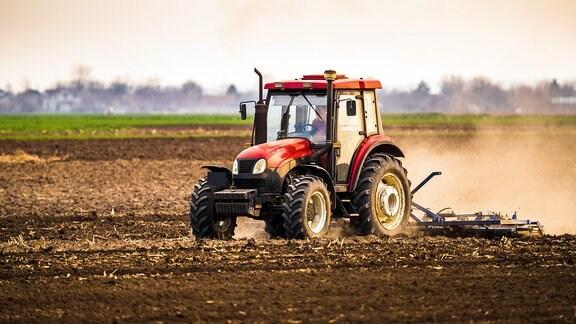 Traktor fährt auf einem Feld mit trockenem, staubigen Boden und zieht eine Sstaubwolke hinter sich her. Aufnahme seitlich von vorn.