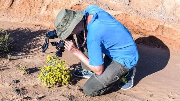 Ein Mann fotografiert eine Pflanze