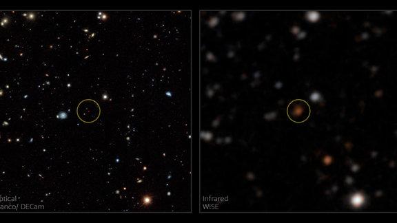 Ein neu entdeckter Brauner Zwerg, wie er auf den Himmelskarten von WISE (rechts) und Legacy Surveys DR8 (links) zu sehen ist. Die linke Tafel zeigt Bilder des sichtbaren Lichts der Dark Energy Camera (DECam) am Víctor-M.-Blanco-Teleskop des Interamerikanischen Observatoriums Cerro Tololo. Der Kreis zeigt den Braunen Zwerg, der in WISE orange und in den Daten der Legacy Surveys von Blanco/DECam tiefrot erscheint. Diese orangen und roten Farben deuten auf einen Braunen Zwerg mit sehr niedriger Temperatur hin. Die Blanco/DECam-Abbildung bietet eine ausgezeichnete Empfindlichkeit und überlegene Winkelauflösung.
