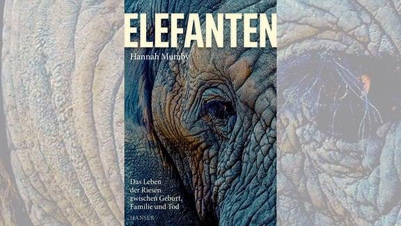 Cover Elefanten