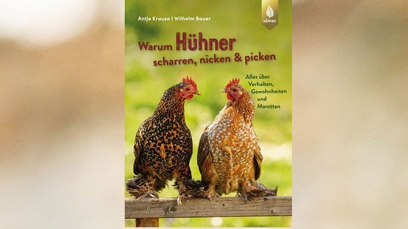 Cover Warum Hühner scharren