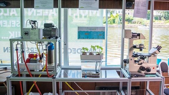 Mikroskope, Aquarium und Forschungsmaterial