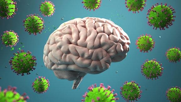 Grafik: Gehirn und Corona Viren