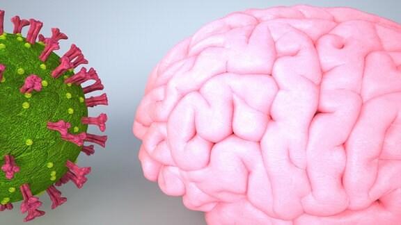 3d-Illustration von Coronavirus und menschlichem Gehirn