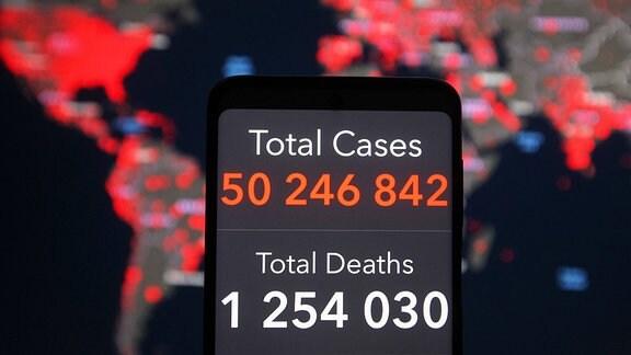 Zahl der weltweiten Coronafälle und -toten auf der Worldometer-Webseite im November 2020