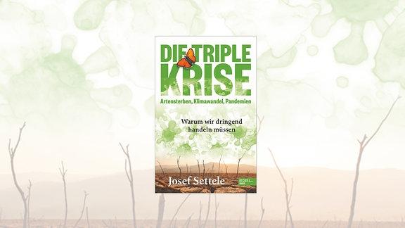 "Cover zu ""Die Triple Krise"""