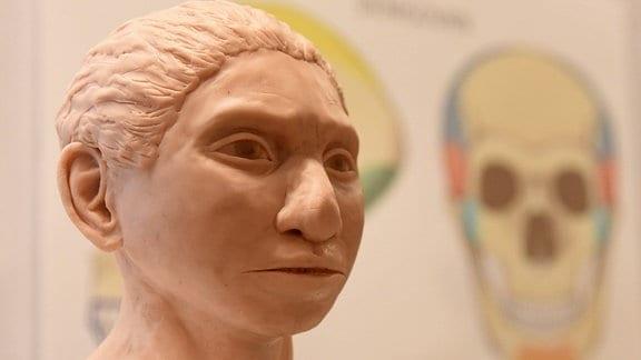 Nachbildung eines Denisova-Menschen