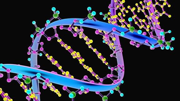 Illustration eines DNA-Moleküls