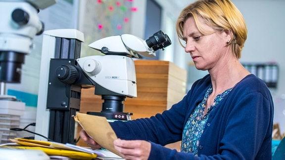 Dr. Doreen Werner mit Mückenpost