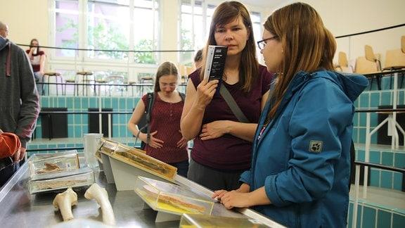 Junge Frauen stehen an einem Sektionstisch mit medizinischen Präparaten.