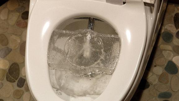 Ein Dusch-WC