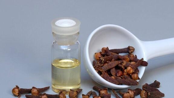 Ein Fläschchen Nelkenöl und Gewürznelken auf Löffel, weitere Gewürznelken verstreut