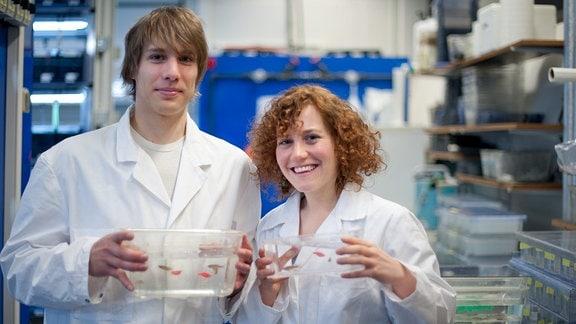 Forschung Epigenetik