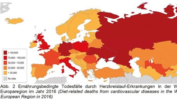 Ernährungsbedingte Todesfälle und Herzkreislauf-Erkrankungen