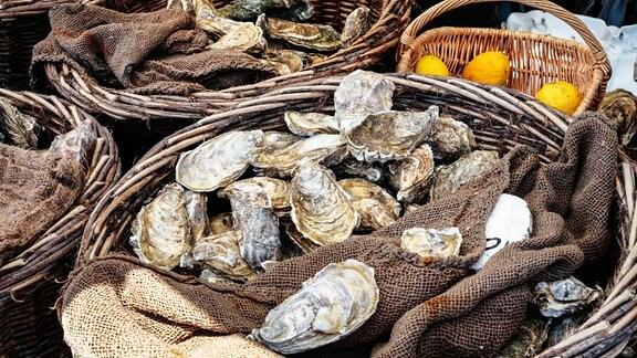 Europäische Austern in Körben
