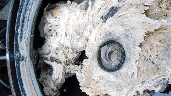 Eine von feuchtem Toilettenpapier blockierte Abwasserpunmpe.