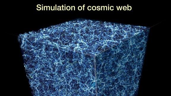 """Diese Grafik stellt einen Ausschnitt aus der spinnennetzartigen Struktur des Universums dar, das als """"kosmisches Netz"""" bezeichnet wird."""