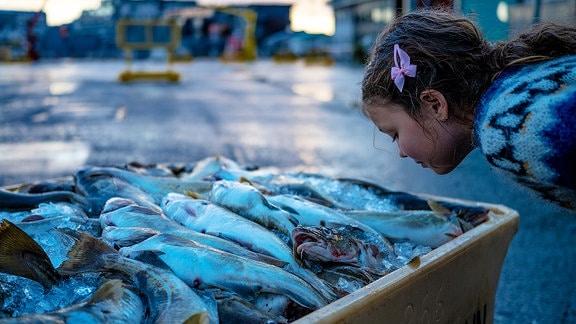 Ein Kind riecht an Fisch.