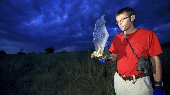 Martin Wikelski, Direktor am Max-Planck-Institut, hält einen besenderten Flughund in der Hand im Kasanka-Nationalpark.