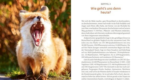 Eine Doppelseite aus dem Buch. LInks das Foto eines gähnenden Fuchses, rechts ein Text über die Artenvielfalt in Deutschland im Vergleich zu Ecuador.
