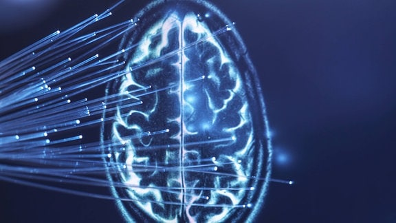 Lichtleiter durchdringen Gehirn